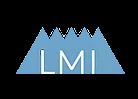 Leadership and Management Institute
